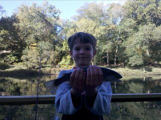 Rainbow trout caught from the dock. (The big one got away)