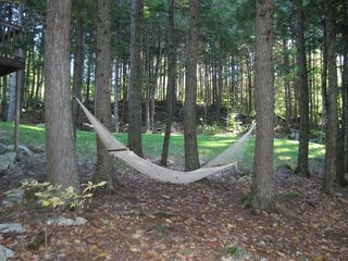 Green Lake cabin photo - Hammock (looking onto side lawn area)