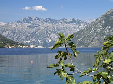 BAY OF KOTOR AT DOBROTA