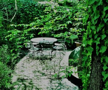 A cool oasis for you alone....rare privacy in center city