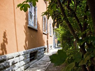 Bologna apartment photo - The little garden surrounding the house, the Medlar tree in the background.