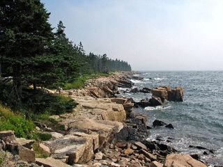 Prospect Harbor cottage photo - Acadia National Park just a 10 minute drive away.