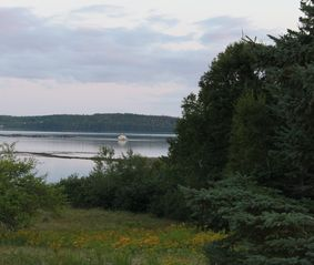 Perry cottage photo - Peaceful evening with view of Salmon Pens