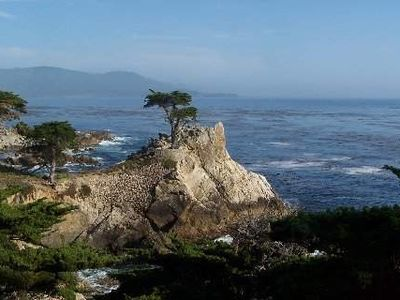 The famous Lone Cypress as seen along the stunning 17 Mile Drive in Pebble Beach