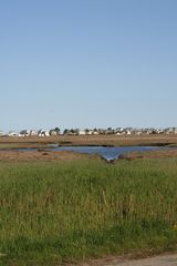 Wells condo photo - View of Rachel Carson Wildlife Refuge