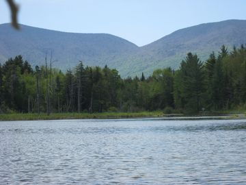 Danby house rental - Some of best fishing at our end of pond. No gas motors allowed.