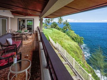Hilo house rental - Looking northeast toward Alaska - the other home of the humpback whale!