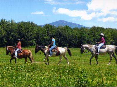 North Conway house rental - This Spring horseback ride right outside your door-(open year round).