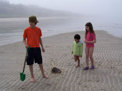 Young guests exploring at low tide