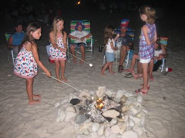 Kids Having Fun Toasting Marshmallows ~ Smores Anyone?