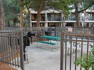 Forest Beach condo photo - Picnic area for guests use