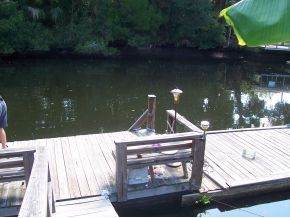Crystal River house photo - Tie your boat to our dock! Rentals available nearby