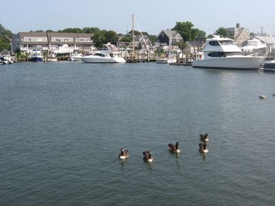 Overlooks Hyannis Harbor