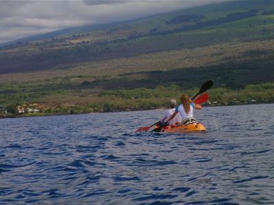 Ocean kayaking and whale watching in season