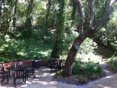 Amelia Island house rental - The Backyard; with steps to The Beach Path. It's Beautiful!
