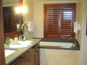 Master bathroom: double vanities, deep tub, separate shower, & walk-in closet