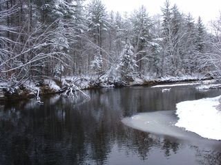 Newry cabin photo - Upriver in Winter