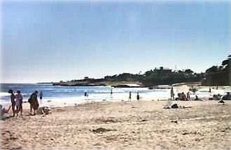 Santa Cruz house rental - 21st Avenue beach is just across the street & steps away from the cottage.