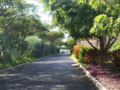 Kihei Akahi driveway looking toward beach