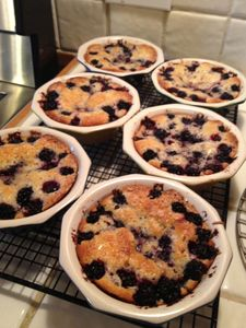 Blackberry mini-pies made with berries gathered within 5 minutes of our home