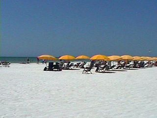 Clearwater Beach condo photo - Clearwater Beach /Fine Sand./ Calm Gulf Water.