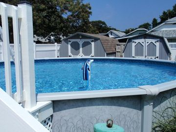 Cape May house rental - 21 foot above ground pool