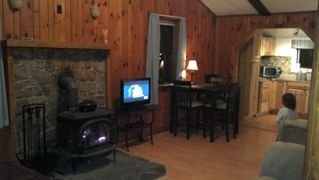 Harrisonburg cabin photo - Warm fire in the living room