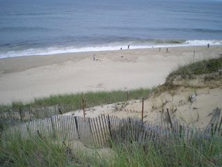 Wellfleet cottage photo - LeCount Hollow Beach - 1/2 Mile away