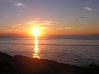 Pemaquid Point cottage photo - The duck's sunrise