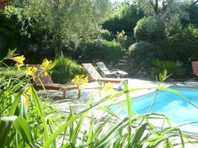 La Gaude villa rental - pool nestled in greenery, olive trees