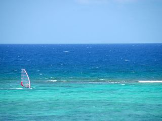 Grand Cayman condo photo - East End Windsurfing