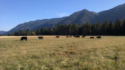 Whitefish farmhouse rental - The Ranch