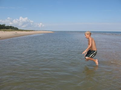 Water is clean and shallow near shore.