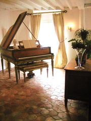 11th Arrondissement Bastille apartment photo - grand piano