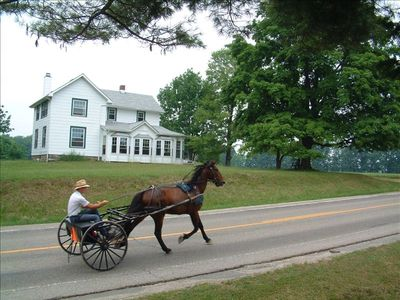 Amish cart and driver trotting by The Farm House in summer