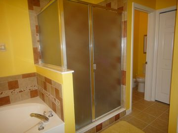 1st downstairs bathroom walk-in shower