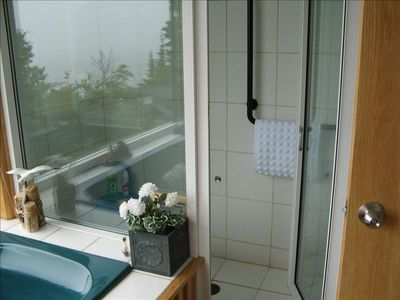 Master Bathroom Steam Shower