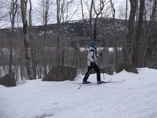 Addison house photo - Skiing on the Carriage Trails in Acadia National Park.