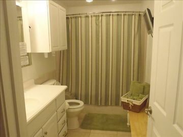 Spacious Bath with Soaker Tub & Shower & TV