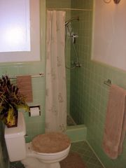 Lago Vista house photo - Master bathroom with shower