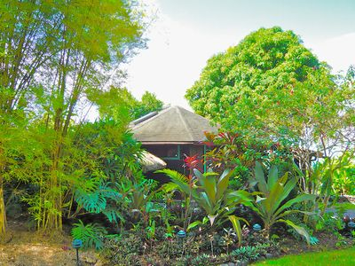 FIrst view of Tara Cottage through a grove of Thai bamboo and tropical plants