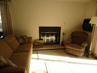 Bellaire / Shanty Creek condo photo - wood burning fireplace