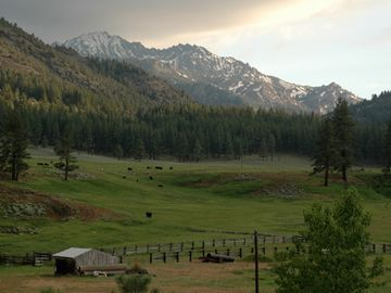 Markleeville house rental - Custom Log Home overlooks a cattle ranch and 10,000ft Raymond Peak from deck.
