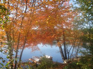 Hillsborough house photo - Autumn veiw of the lake house dock