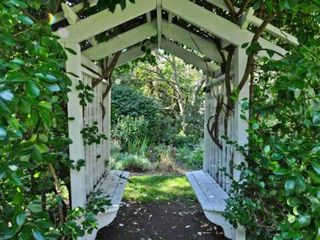 Vineyard Haven house photo - Vine-Covered Arbor Offers A Shady Spot To Relax