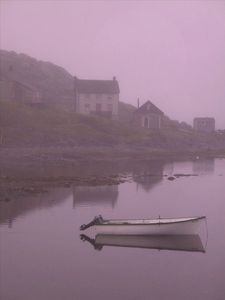 Back Harbour, Twillingate Island