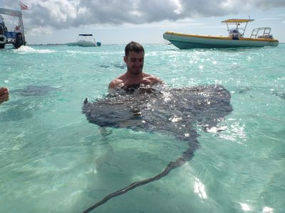 Visit Stingray City to meet the docile rays. An experience you will never forget