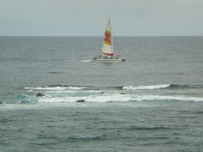 Also enjoy watching sailing and snorkel tours