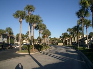 St. Augustine Beach condo photo - Beautiful Grounds of Ocean Gallery