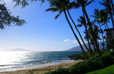 One of Maui's best beaches; Kamaole Beach is within a few steps of the condo.